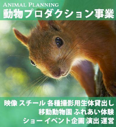 動物プロダクション事業