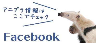 アニプラ公式facebook